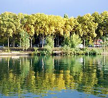 Reflections in the river Rhone at Lyon - France by Arie Koene