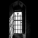 Window Without a View by Erik Brede