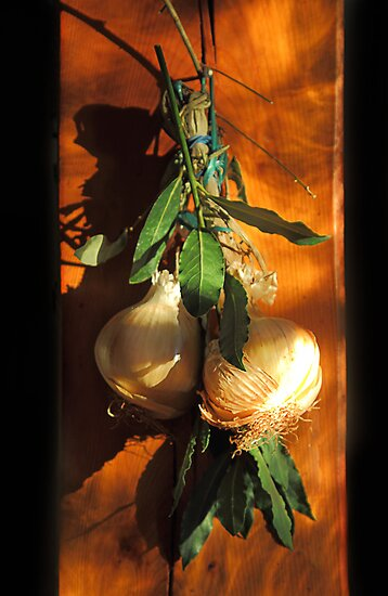 Bay leaves and onions by Paul Pasco
