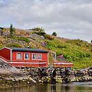 White Curtains on Rugged Haholmen Island, Norway by Gerda Grice