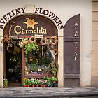 Praha: The Flower Shop by Jacinthe Brault