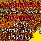 top 10 extreme close up banner by dedmanshootn