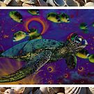 Turtle by Shutter Speed Artography