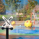 Water Park by Tracy Riddell
