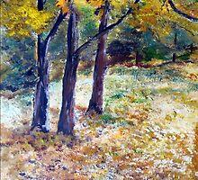 In Jim's backyard by Elizabeth Kendall