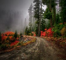 The Glory Road by Charles & Patricia   Harkins ~ Picture Oregon
