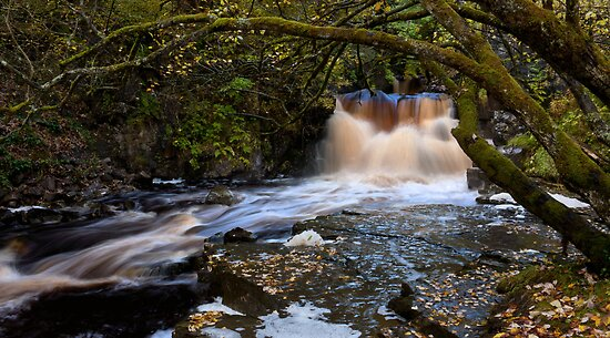 Low Force - Tributary Falls by Harry Purves