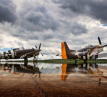 ~Flying Legends~ by Delfino