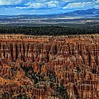 Bryce Canyon by Tom Prendergast
