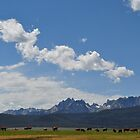 Sawtooth Mountain Range - Stanley, ID by CADavis
