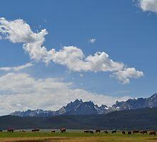 Sawtooth Mountain Range - Stanley, ID by CADavis