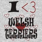 I <3 Welsh Terriers by veganese