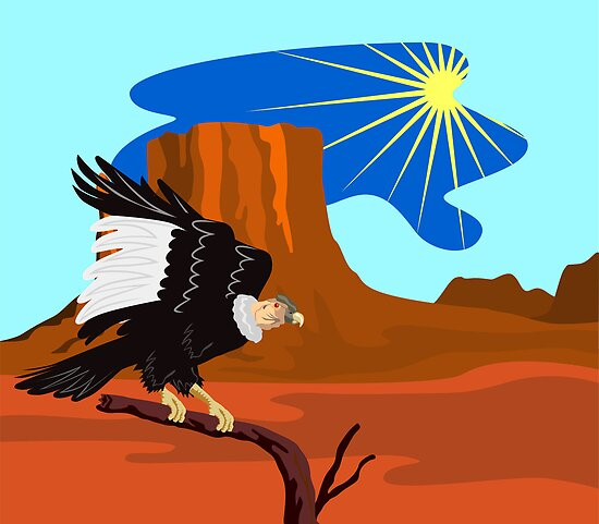 Vulture Buzzard Bird by patrimonio