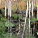 Autumn Reflections (Abstract) by KAREN SCHMIDT