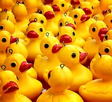 Just a Few More Ducks by Bami