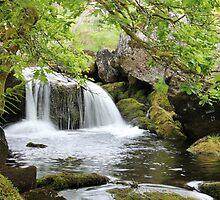 Dartmoor Waterfall by mwrey