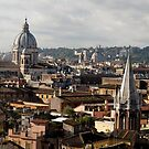 Rome Panorama by Matthew Walters