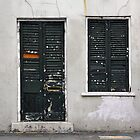 New Orleans Windows and Doors VI by Igor Shrayer