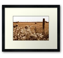 Autumn in North Central Florida Framed Print