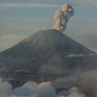 Early morning eruption. Mt Semeru, Java. Indonesia. by Ian Hallmond