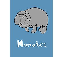 M for Manatee Photographic Print
