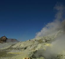 Steaming sulfur vents. White Island volcano. NZ by Ian Hallmond