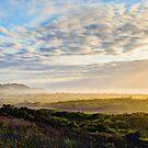 Mistical Arakwal - Byron Bay by Cheryl Styles
