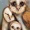 three wise owls by Karin  Taylor