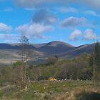 Lugnaquilla mountain-Ireland by Desaster
