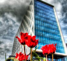 110 Salford Quays, Manchester by George Standen