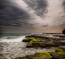 Turimetta Drama by Dianne English