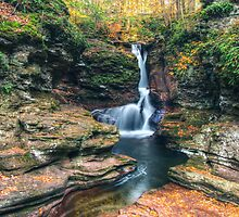 Adams Falls on a Thursday Morning by Aaron Campbell