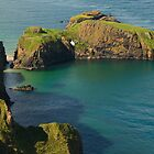 Carrick-a-Rede Rope Bridge by Adrian McGlynn