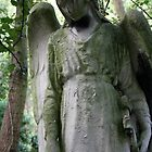 Highgate Cemetery angel by TheLondonphile
