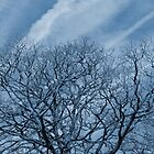 Blue Tree by Gordondon
