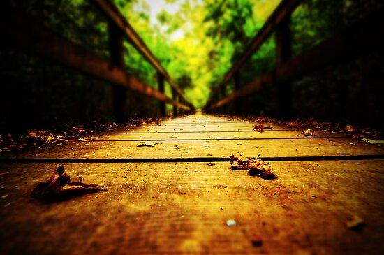 Life's Path.... by Thomas Eggert