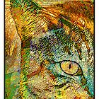 My Cats Eye in Palms by modernartcards