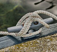 Dock Cleat by Tom Causley