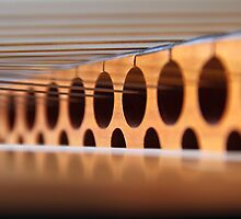 Hammered Dulcimer - From The Inside Out by Carla  Overduin