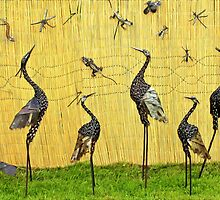 A sedge of cranes by missmoneypenny
