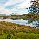 View Across Loch Awe by Sue Knowles