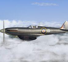 Seafire Mk XV by Walter Colvin