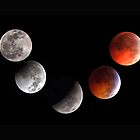 LUNAR ECLIPSE by Joe Saladino