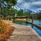 Walk Around The Lake by Keri Harrish