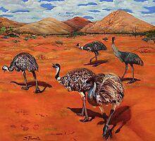 Emus by shallay