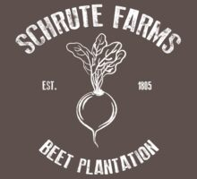 Schrute Beet Plantation by JDCUK