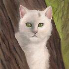 Snow-white  the cat by Kostas Koutsoukanidis