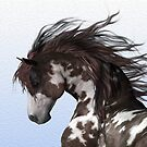 **EVERYTHING EQUINE CLOSED FOR AWHILE**