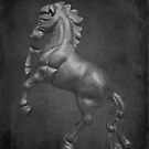 Horse Textured by MJD Photography  Portraits and Abandoned Ruins