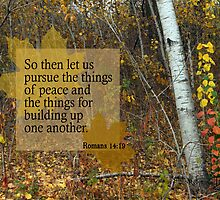 Peace and Building ~ Romans 14:19 by Robin Clifton